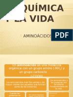 QUIMICA AMINOACIDOS
