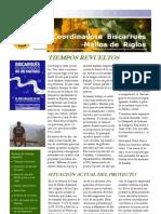 Boletín Coordinadora Biscarrués Mallos de Riglos, 1 (2010)