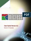 Vol4 MICRESS Examples