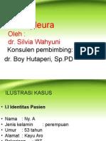 Presentation EFUSI