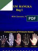 Anatomi Rangka I