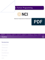 NCI Fortran Basic