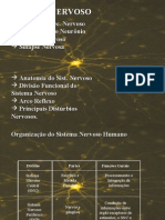 Biologia - Sistema Nervoso - slide 2 - Monica