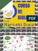Biologia - Taxonomia - Marcelo