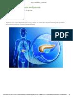 Síntomas de problemas en el páncreas.pdf