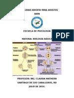CICLO CELULAR, MITOSIS Y MEIOSIS.doc
