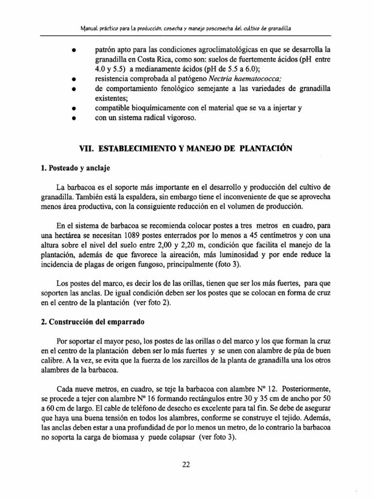 Lujoso Prácticos De Costa Para Marcos De Cuadros Bosquejo - Ideas ...