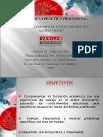 informe PProfesional Verilab