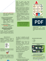 SEGREGACION DE   RESIDUOS SOLIDOS - copia.pdf