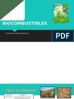 BIOCOMBUSTIBLES-GARRIDO-2 (2).pptx