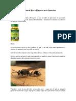 Tratamiento Natural Para Picadura de Insectos