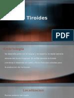tiroides 3