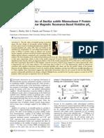 Electrostatic Energetics of Bacillus Subtilis Ribonuclease P Protein