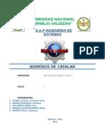 Numeros de Catalan