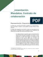 Derecho Privado III actualizaciones reforma Codigo Civil y Comercial 2015