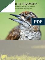 Fauna Silvestre Casanare