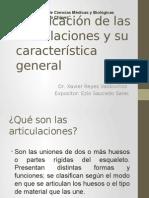 Clasificación de Las Articulaciones y Su Característica General