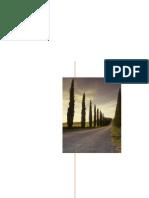 Final Report NLP .PDF
