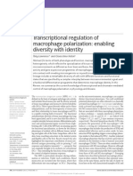 Transcriptional Regulation of Macrophage Polarization Enabling Diversity With Identity