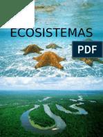 ECOSISTEMAS.pptx