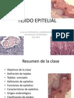 01-teo-epitelios-2014.pdf