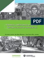 Violencia y Delincuencia en Barrios. Sistematización de Experiencias. 2009.