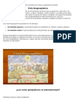 ciclos-biogeoqumicos