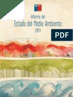 Articles-52016 InformeEsradoMedioAmbiente Completo 2011