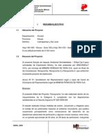 Resumen Ejecutivo EIA Semidetallado