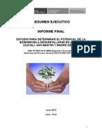 Resumen Ejecutivo Potencial Bio Energia 2013
