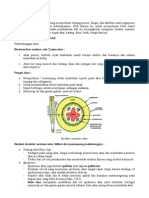 Review Struktur Tumbuhan