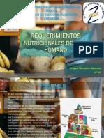 2752 Requerimientos nutricionales Del Ser Humano