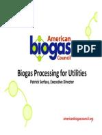 10. Important BiogasProcessing.pdf