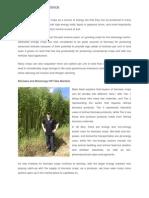 Ecotech Alliance Explains Multiple Uses for Dedicated Bioenergy Crops