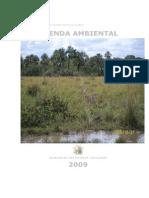 Agenda Ambiental de San Martin de Los Llanos