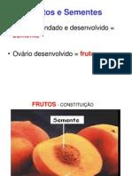 Frutos e Sementes