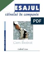 Gabriel Cocu - Dresajul Cainelui de Companie A5