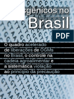 Transgênicos No Brasil Internet