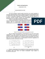 Roteiro de Experimento - Ímã PDF