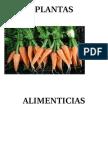 PLANTAS ALIMENTICIAS