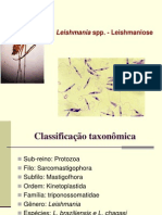 5a Aula Protozoologia Leishmania e Leishamniose