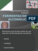 fermentacinalcohlica-110121140039-phpapp02.pptx