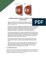 Degeneração Macular e Catarata x Luteína e a Zeaxantina