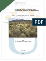 Modulo Economia Ambiental - Final