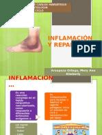 INFLAMACIÓN Y REPARACIÓN....pptx