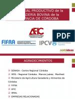 Potencial Productivo Bovino de la Provincia de Córdoba