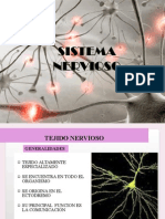 Sistema Nervioso Completoppt