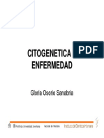 Cito Genetic a Enf