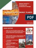 combustione biomassa