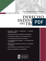 Derecho+Individual+del+Trabajo.pdf
